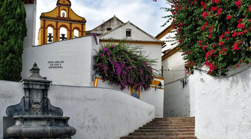 city street flowers buildings